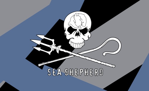 zstudio spendet an Sea Shepherd.